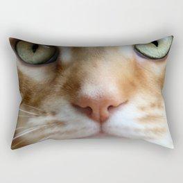 Ginger Mint Kitteh Rectangular Pillow