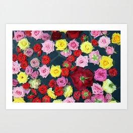 Onsen Roses Art Print