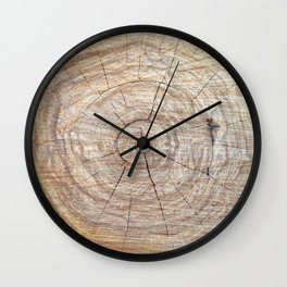Log with annual rings on a slice. Wall Clock