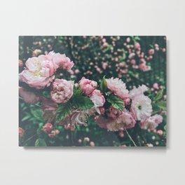 Summer Floral Bloom Metal Print