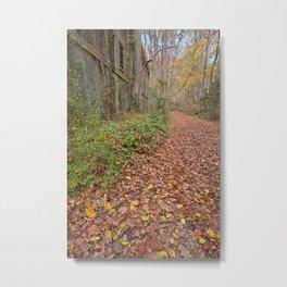 Fall Power House Trail Metal Print