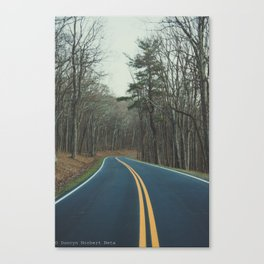 Road to finding yourself Canvas Print