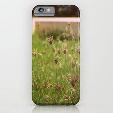 Wild Shrubs iPhone 6s Slim Case