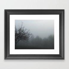 myst Framed Art Print