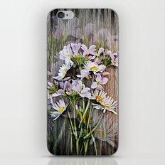 Cuckoo Daisies iPhone & iPod Skin