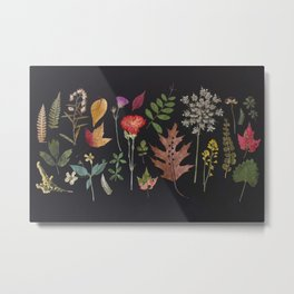 Plants + Leaves 4 Metal Print