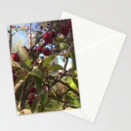 Crabapple Tree in Springtime Stationery Cards