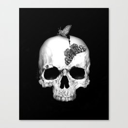 Skull and soul Canvas Print