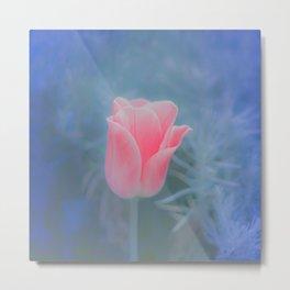Pink Flower over Blue Metal Print