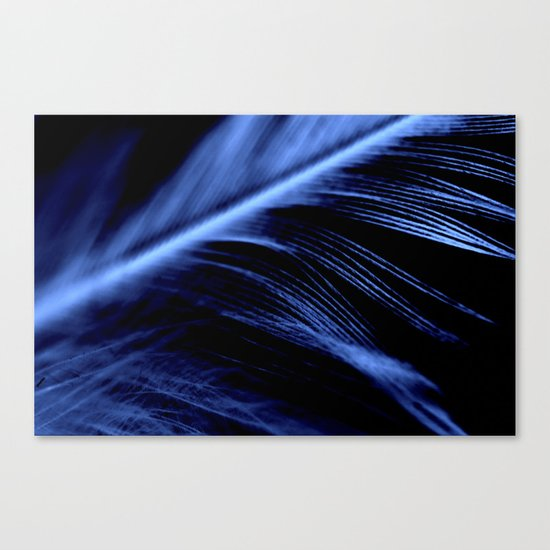 Blue Feather close up Canvas Print