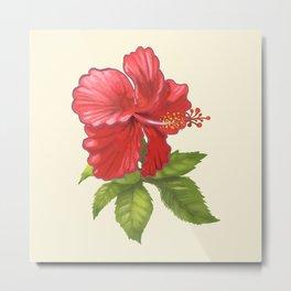 Pink Tropical Hibiscus Flower Painting Metal Print