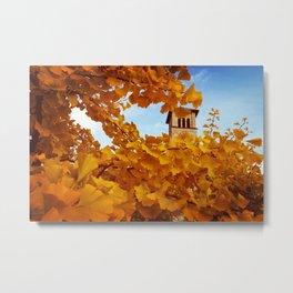 Bell Tower behind Yellow Ginkgo Leaves, blue sky Metal Print
