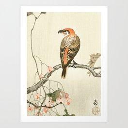 Red crossbill sitting on a tree - Vintage Japanese Woodblock Print Art Art Print