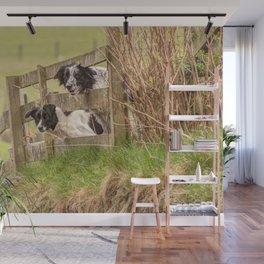 Countryside farm sheep dogs Wall Mural