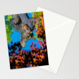 Hairless Sphynx kitten peering into a mirror Stationery Cards