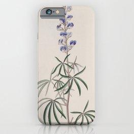 Flower 1140 lupinus laxiflorus Lax flowered Lupine13 iPhone Case