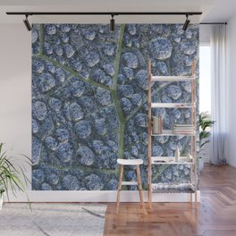 Cool water drops dew texture leaf Wall Mural