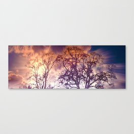 Wintry mood Canvas Print
