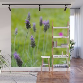 Lavender season Wall Mural