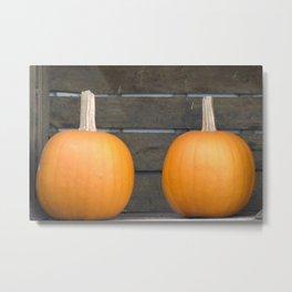 Two pumpkins Metal Print
