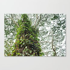 Leafy Leaves Canvas Print