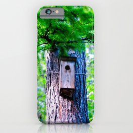 Old Bird House On A Large Larch Tree In Spring. Fresh Green Leaves And Needles iPhone Case