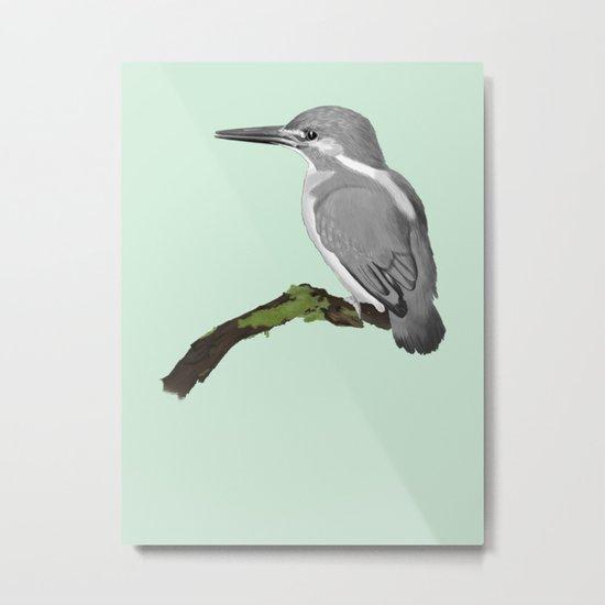 Kingfisher in gray Metal Print