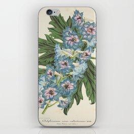 Delphinium Wseo Coelestinum Vintage Botanical Floral Flower Plant Scientific iPhone Skin
