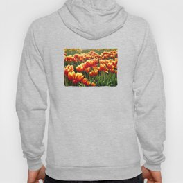 Tulips Are Better Than One Hoody