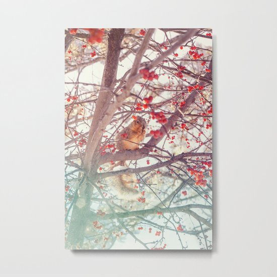 Squirrel Meal on a Cherry Tree Metal Print