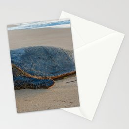 turtle nap Stationery Cards