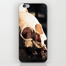 Skull - Mint in Box iPhone & iPod Skin