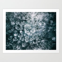 Winter Forest - Aerial Photography Art Print