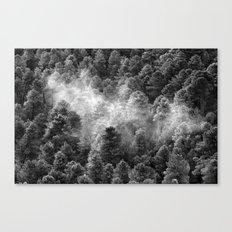Foggy forest. BN Canvas Print