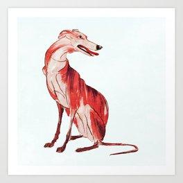 Whippet 1 Art Print