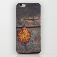 vintage leaf. iPhone & iPod Skin