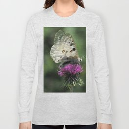 Butterfly on Thistle Flower Long Sleeve T-shirt