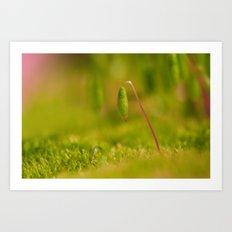 Moss germ, Alone in a green Land Art Print