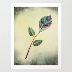 Strange Flower 2 Art Print