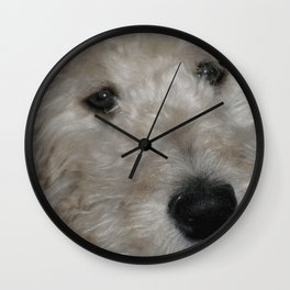 Cute Goldendoodle Puppy Dog Portrait Wall Clock