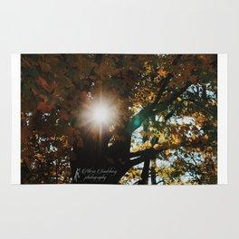 Fall Sun Rug
