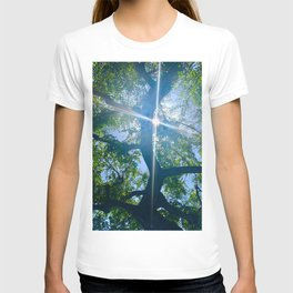 Blue Sky Through the Trees with Flare T-shirt