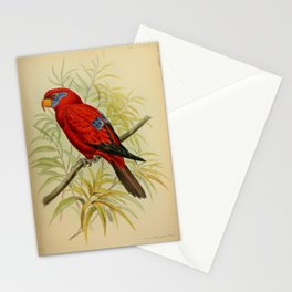Blue eared Lory or Ceram Lory or Half masked Lory or Seram Lory Stationery Cards