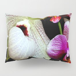 A Grounder With Those Treebies Pillow Sham