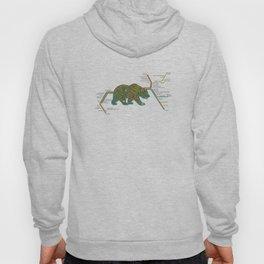 The Bear Area Hoody