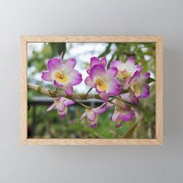 Fleeting Fairytales Framed Mini Art Print