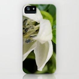 Poblano flower iPhone Case