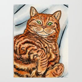 Ginger Cat Poster