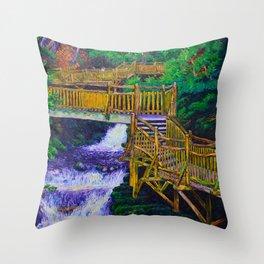 Stairs at Bushkill Falls Throw Pillow