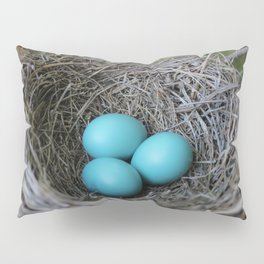 New beginnings nesting Pillow Sham